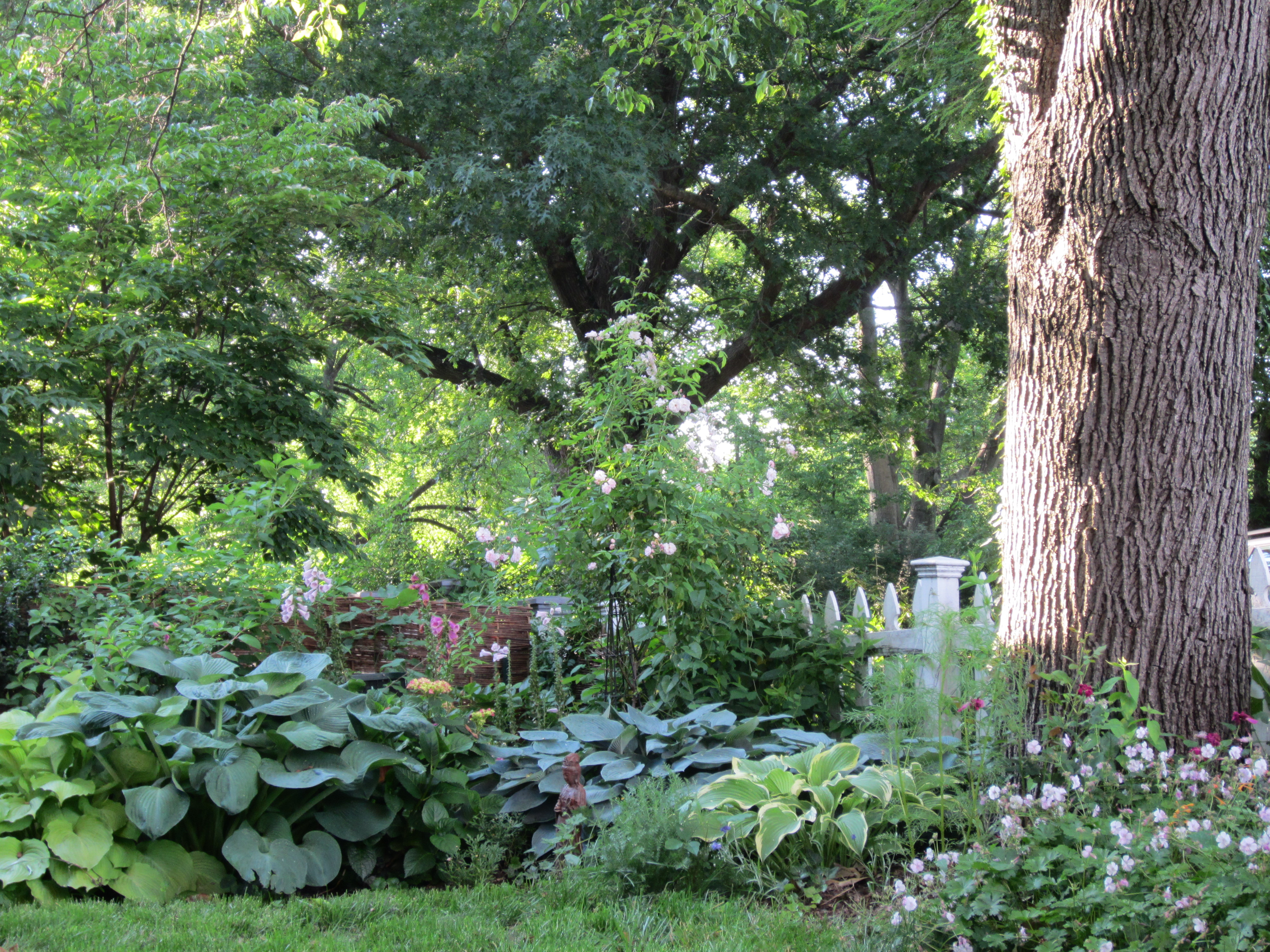 Shade Cottage Gardens Images Pictures Becuo