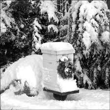 Christmas bees