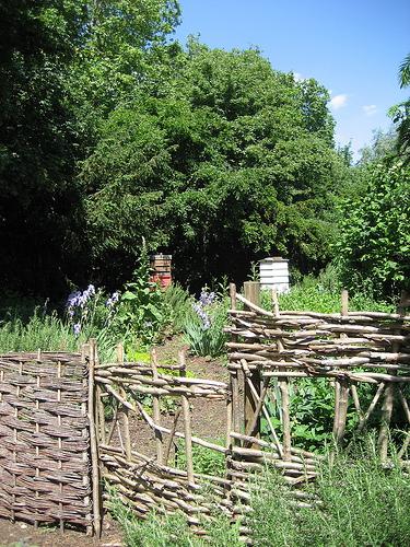 Hives at Kew Gardens in London