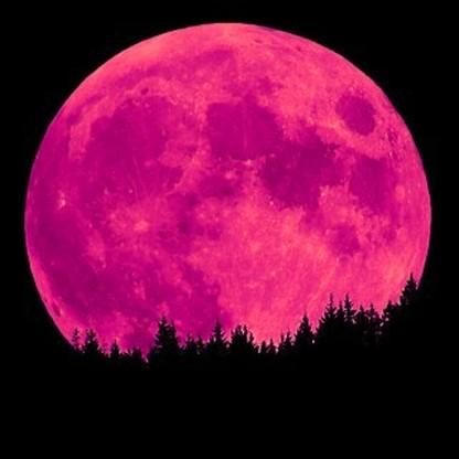 pink-moon.jpg