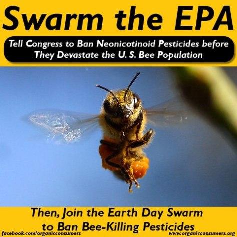 swarm the epa