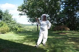 bee suit 2