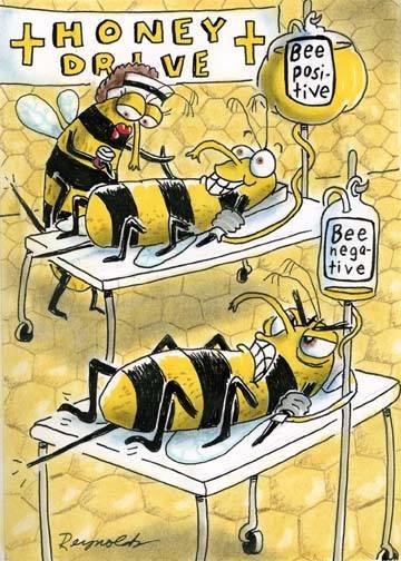 bee humor pollinator positive romancing