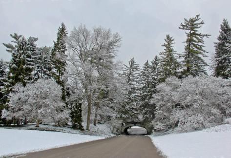 Spring Grove 3